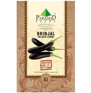 Black Brinjal (Long) Vegetable Seeds
