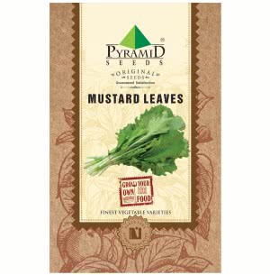 Mustard Vegetable Leaves Seeds