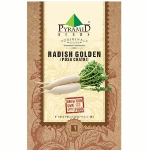 Radish Golden Seeds (Pusa Chatki) - 250 g