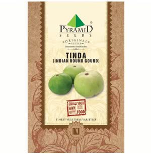 Indian Round Gourd Seeds (Tinda)