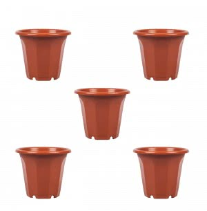 Aristo Rainbow Planter No.3 - Set of 5