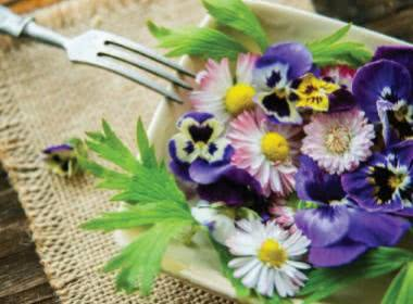 AN INTRODUCTION TO EDIBLE FLOWERS