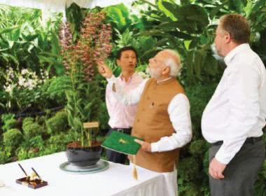WHICH FLOWER IS NAMED AFTER OUR PM NARENDRA MODI?