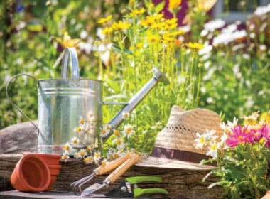 IS YOUR GARDEN READY FOR SUMMER?