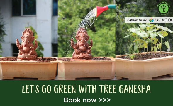 Online Garden Store, Seeds & Agricultural Products | Ugaoo com