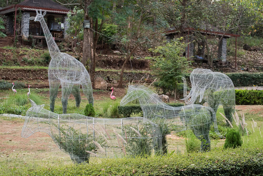 Animal shape topiary wire in garden