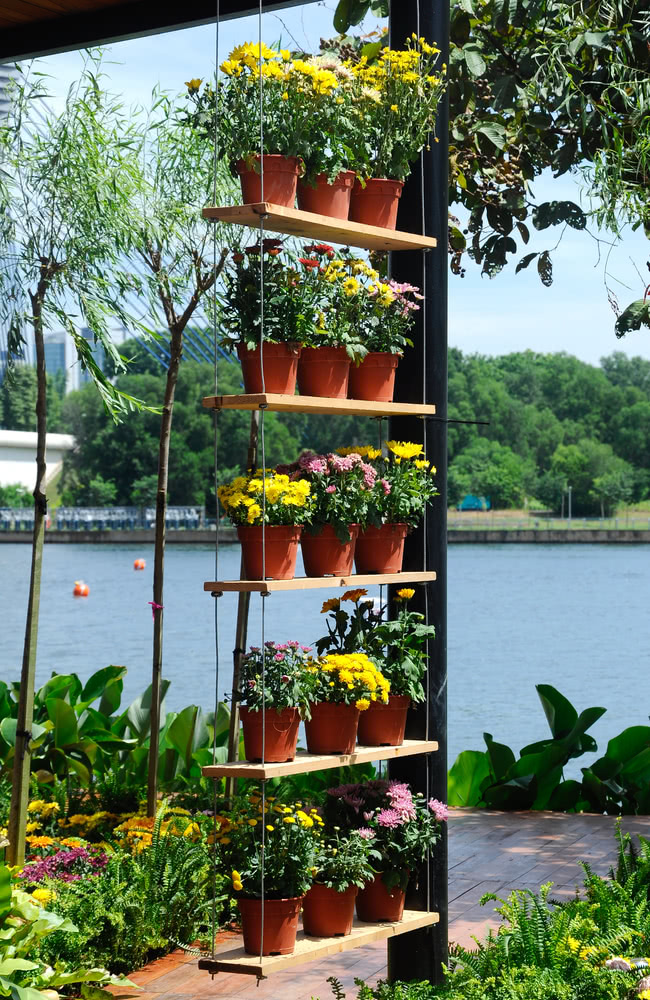 Flower pots hanging on wooden tray