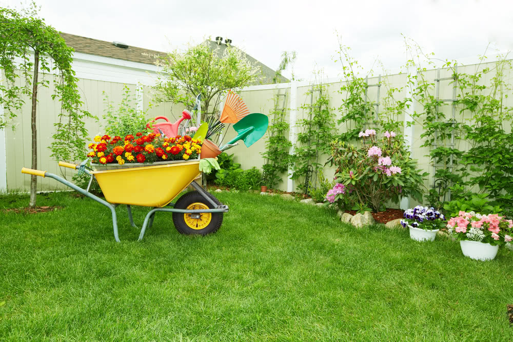 Gardening tools and their uses basic garden tools online for Top gardening tools 2016
