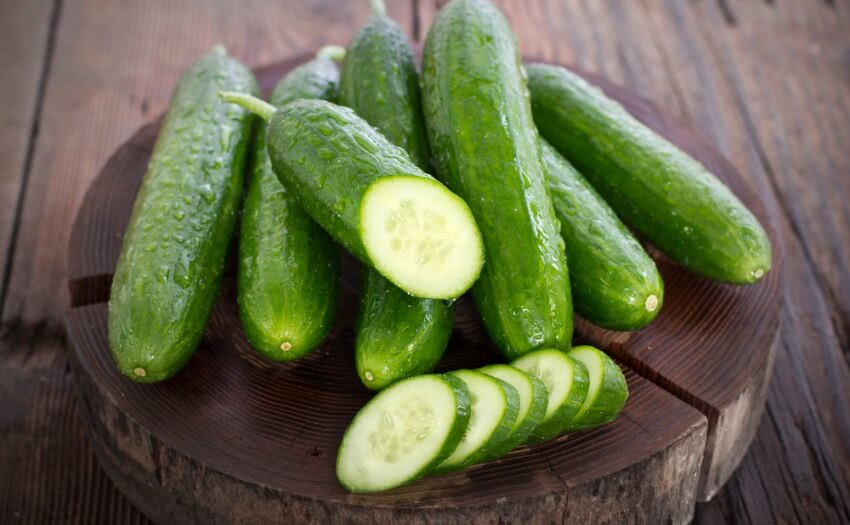 How To Grow Cucumber