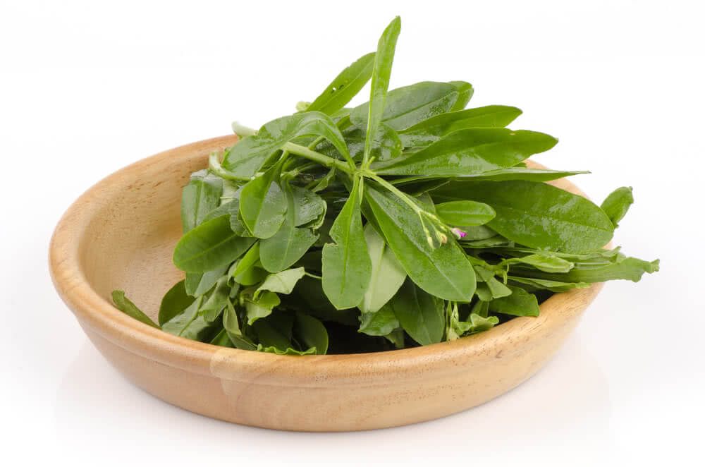 growing spinach, spinach varieties