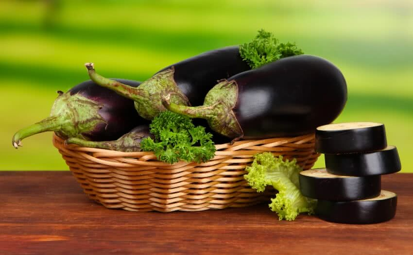 how to grow eggplant at home