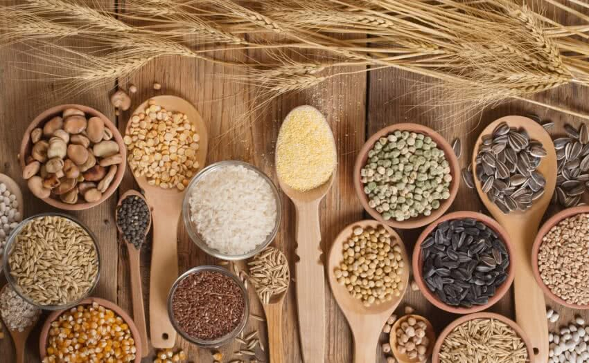 seeds , selection of seeds, importance of seed selection