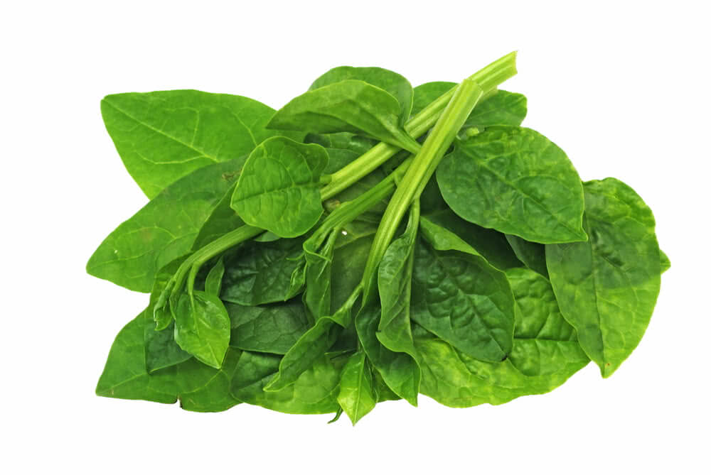 spinach varieties, spinach vegetable