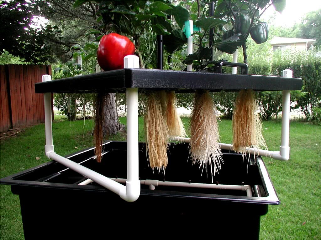 Aeroponics Growing System What Is Aeroponic System
