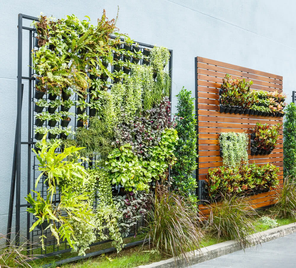 Fascinating Ugaoo Gardening Blogs  Page  With Foxy Vertical Gardens The Living Walls Of Your Home With Agreeable Which Gardening Zone Am I In Also Salieri Restaurant Covent Garden In Addition The Anxious Gardener And Leicester Garden Centre As Well As Garden Cabins And Summerhouses Additionally Covent Garden Food Market From Ugaoocom With   Foxy Ugaoo Gardening Blogs  Page  With Agreeable Vertical Gardens The Living Walls Of Your Home And Fascinating Which Gardening Zone Am I In Also Salieri Restaurant Covent Garden In Addition The Anxious Gardener From Ugaoocom