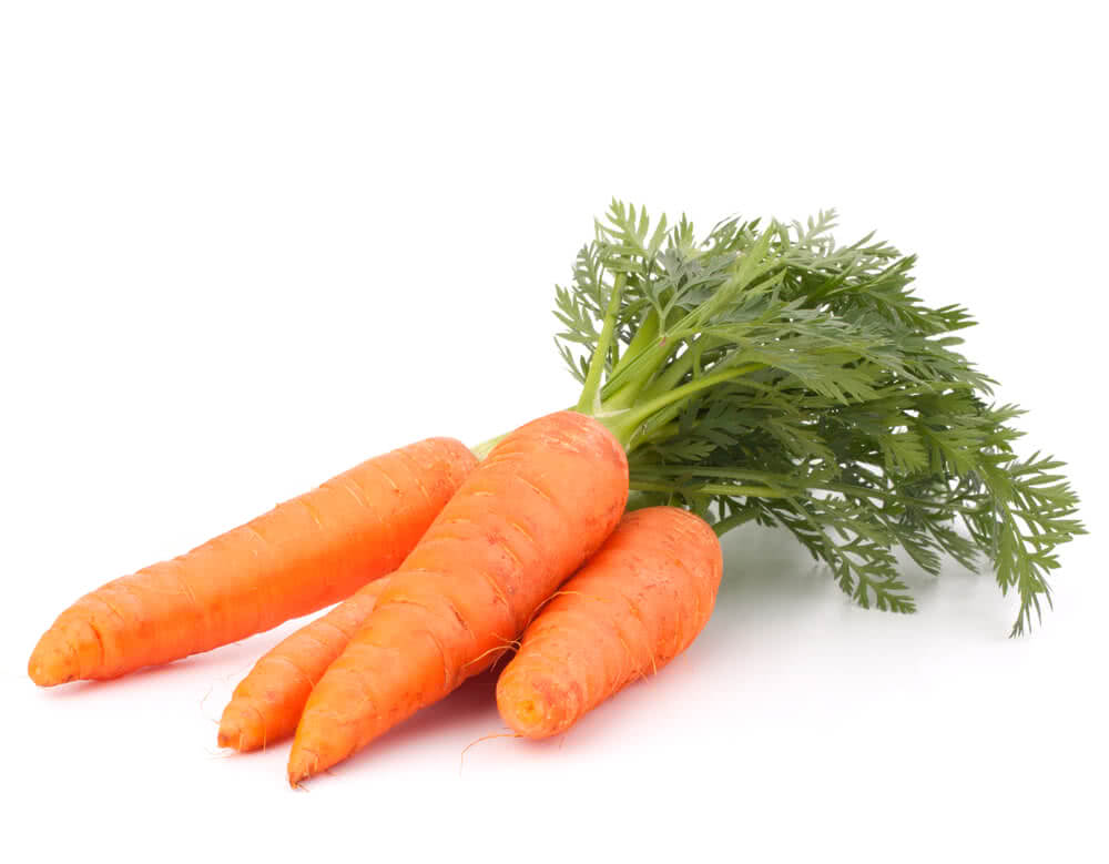 regrow carrot leaves