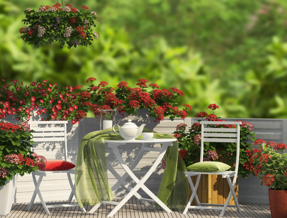 terrace garden as therapy and for natural healing