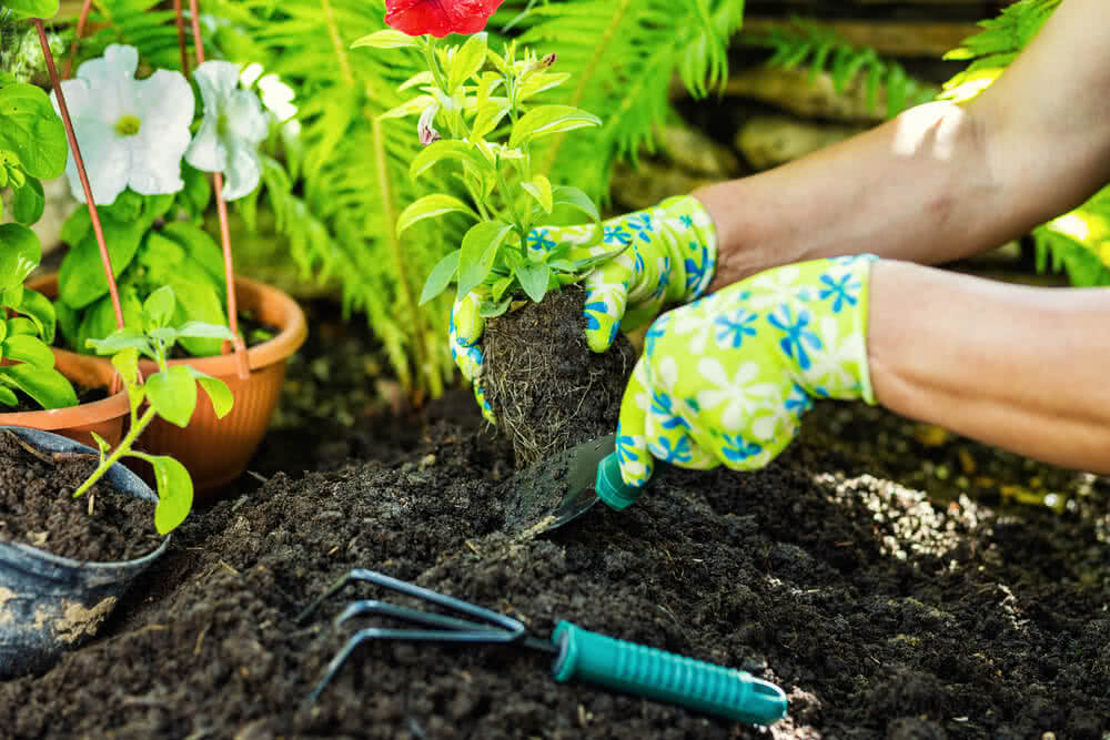 mixing compost with soil