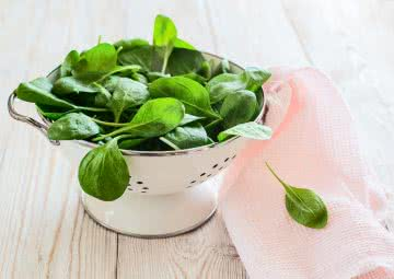 spinach vegetable