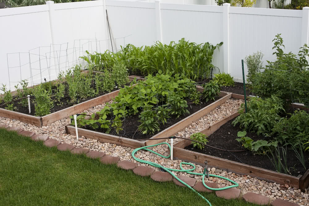 How To Plan A Vegetable Garden Layout, Backyard Vegetable Gardening Project Proposal