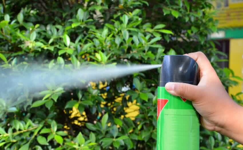 spraying pest control chemicals