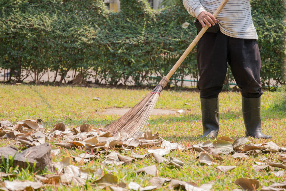 sweeping lawn leaves with lawn sweeper