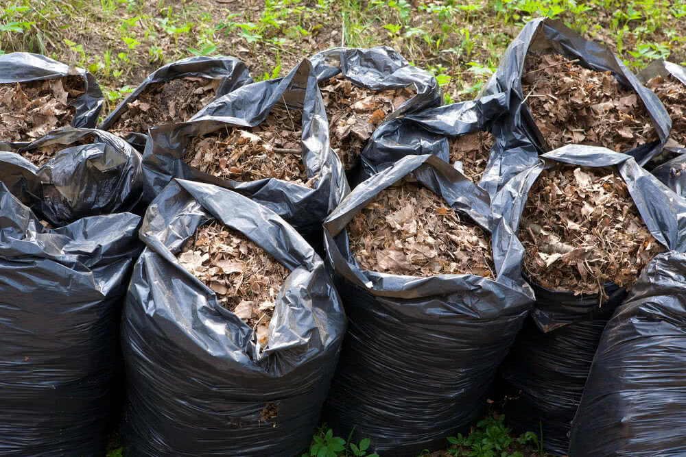composting leaves in plastic bags