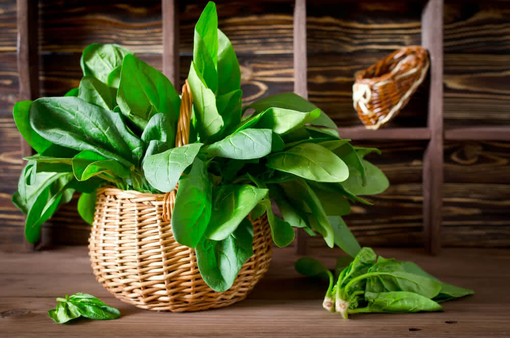 antioxidants in spinach