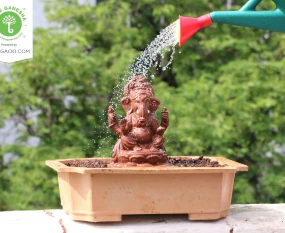 Celebrate Eco-friendly Ganesh Chaturthi with Ugaoo