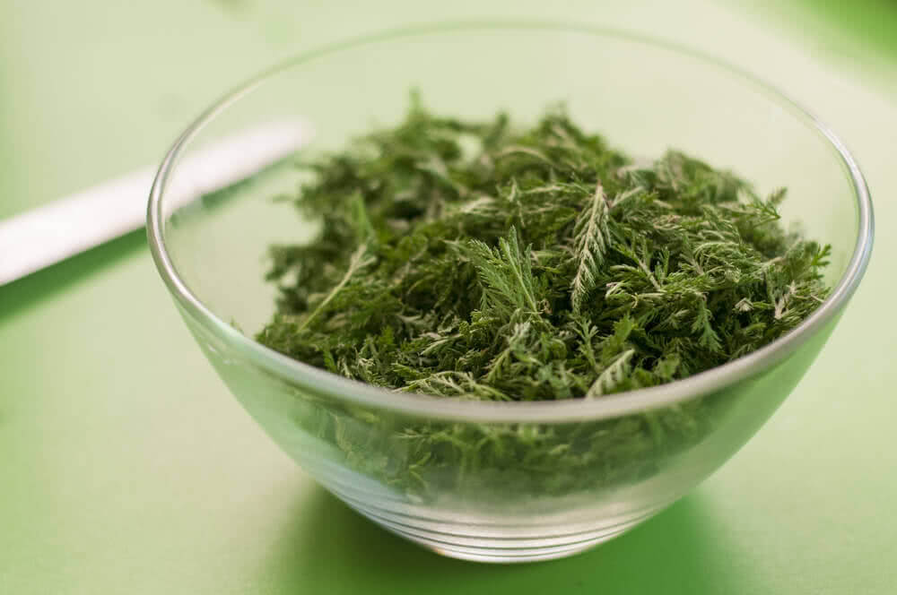 yarrow in bowl for cooking