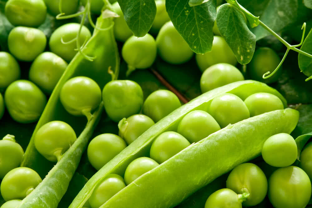 Green peas for salad