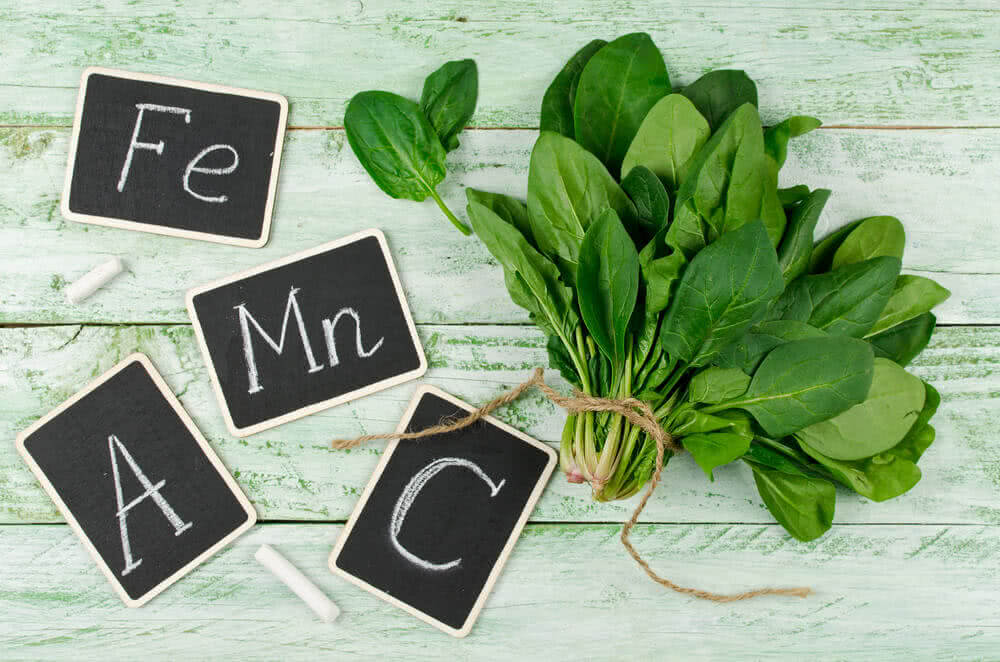 micro and macro nutrients in plants