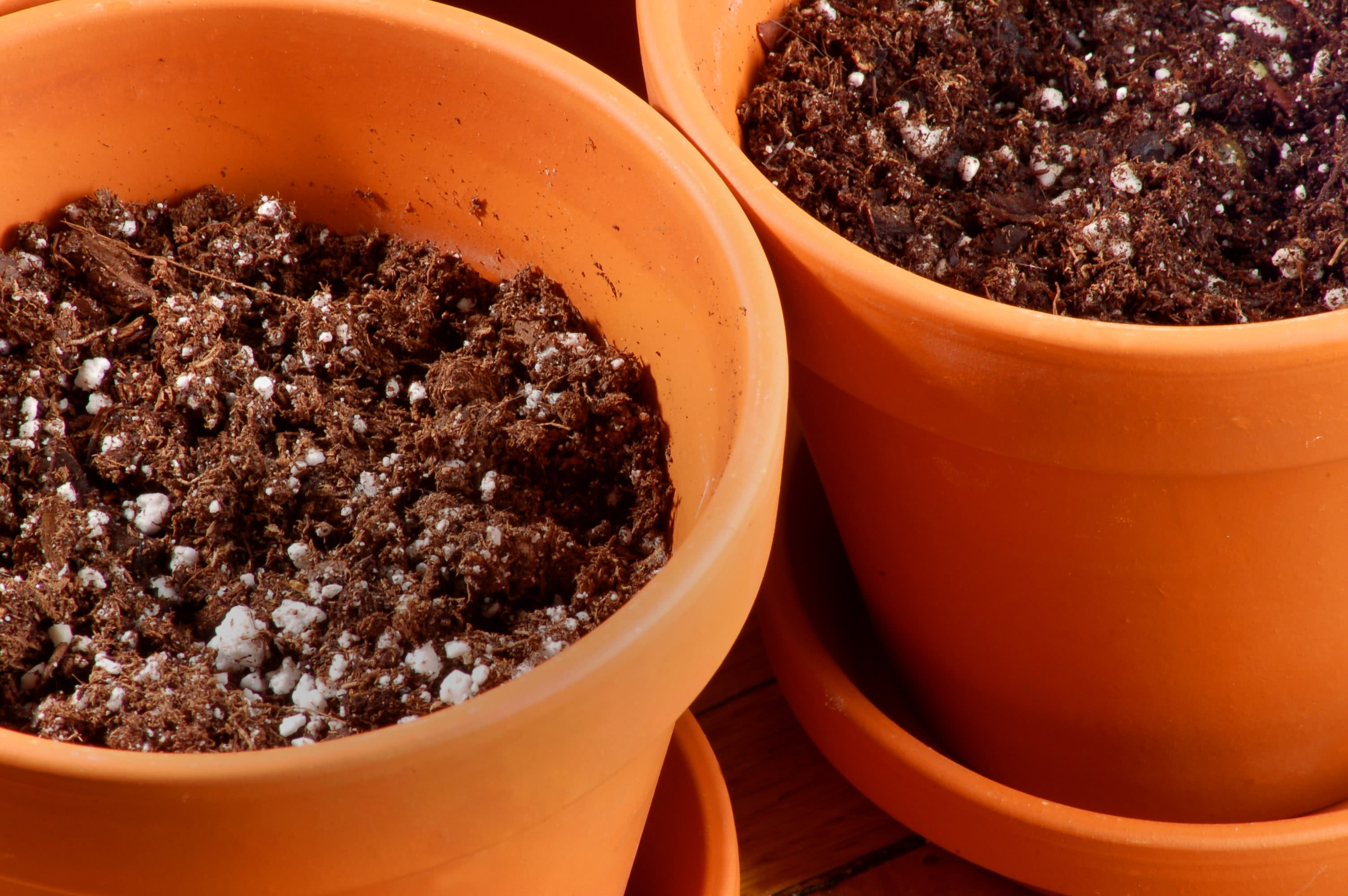 best soil for potted plants