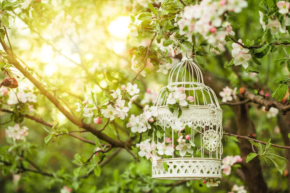 Bird cage for garden birds