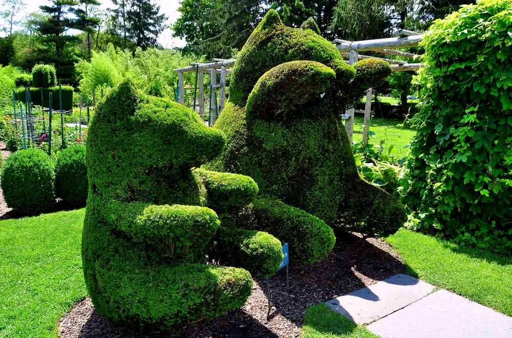 topiary bears in green animals topiary garden