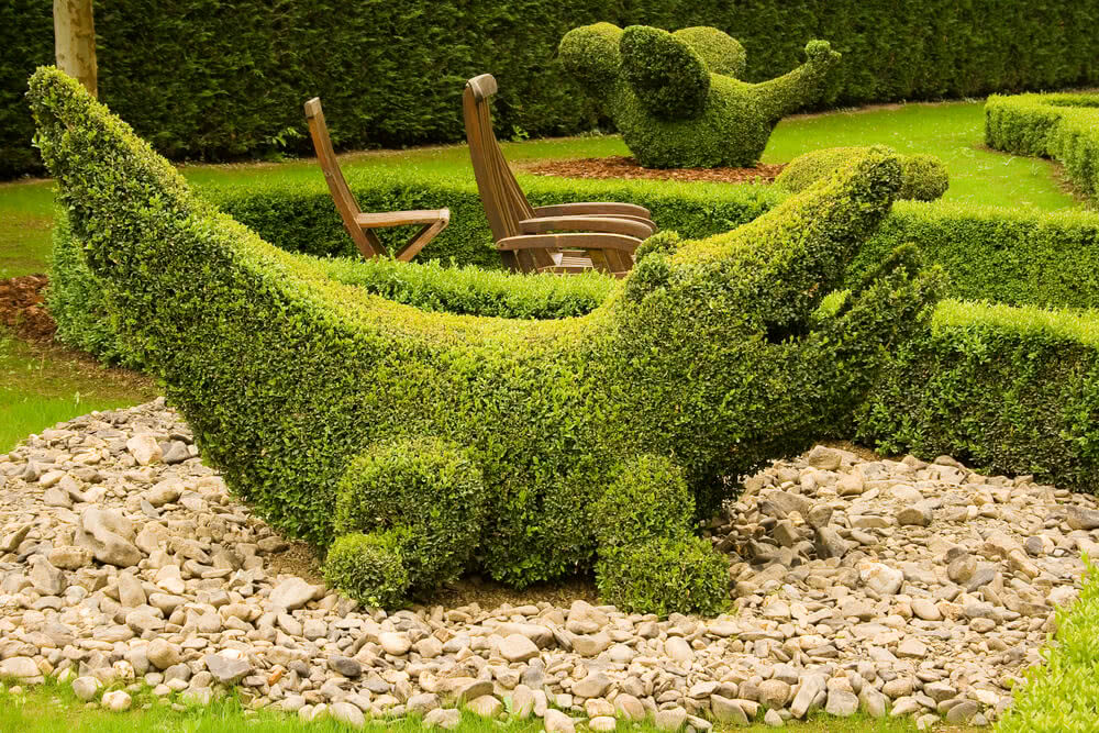 crocodile shape topiary