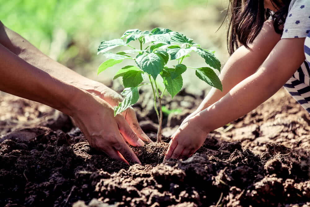 physical benefit of gardening