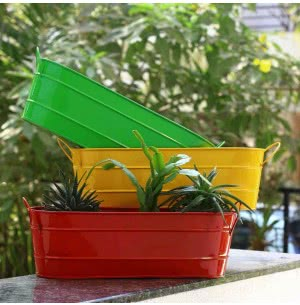 Oval Planter Large - Set of 3 (Red, Yellow & Green)