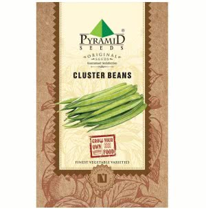 Cluster Beans Vegetable- 50 Seeds